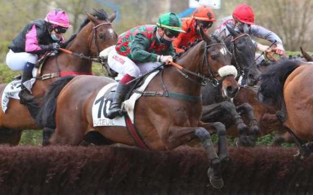 COLBERT DU BERLAIS cheval