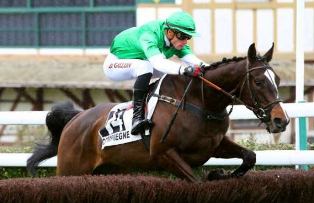 THE REVENANT cheval