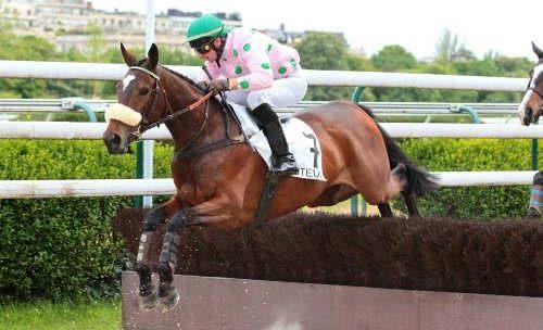 Cheval VERDURE DES OBEAUX