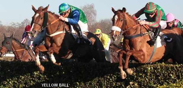 Cheval YELLOW BALL