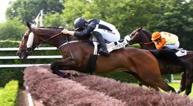 ZARISK cheval