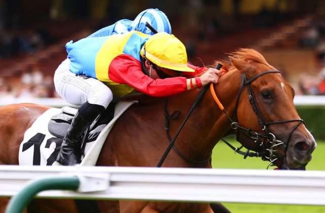 AIGUIÈRE D'ARGENT cheval