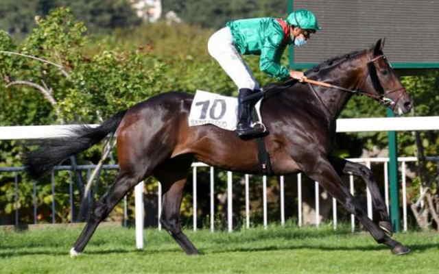ASHIM cheval