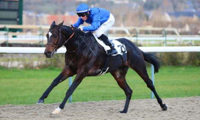AYDON CASTLE cheval