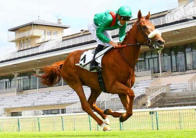 EBAIYRA cheval