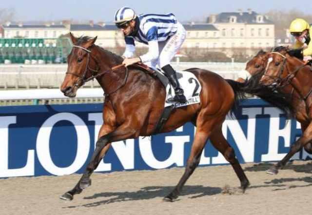FAVARITX cheval