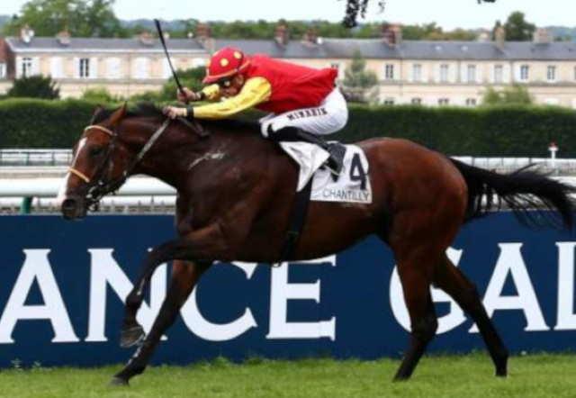 GOLD LAKE cheval