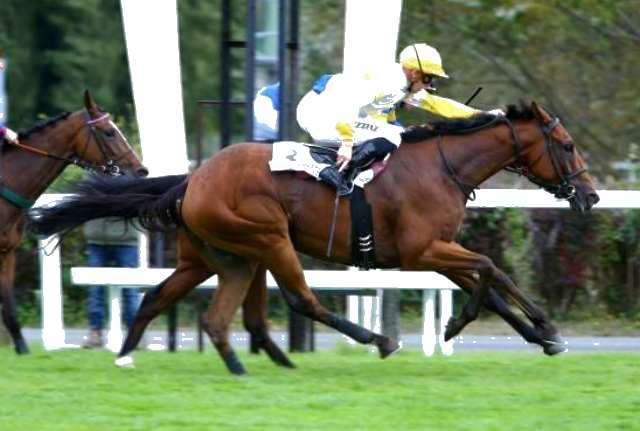 INVESTOR cheval