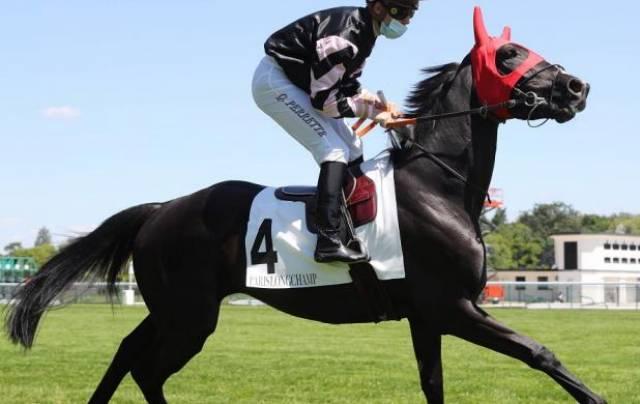 KAVIARE cheval