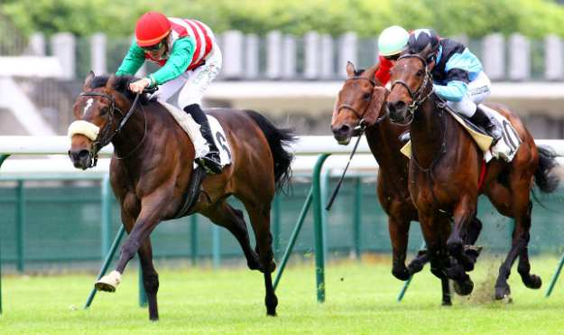 Cheval Le Scribe - Casaque cerclée blanche et rouge, manches vertes, toque rouge