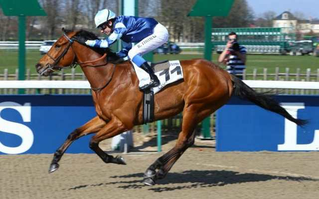 Cheval MIRACLE DES AIGLES