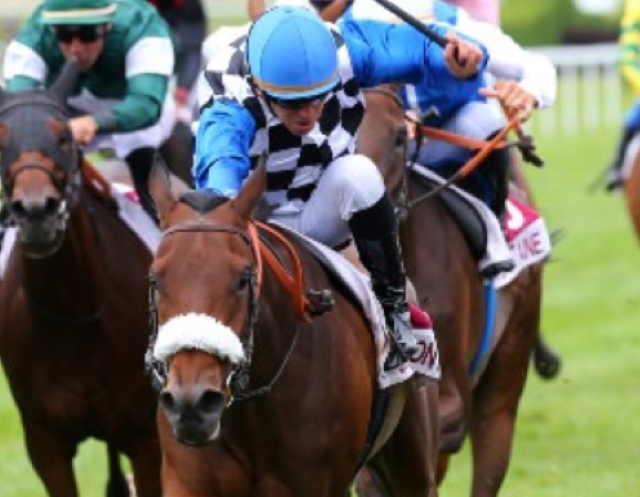 MOONLIGHT SYMPHONY cheval
