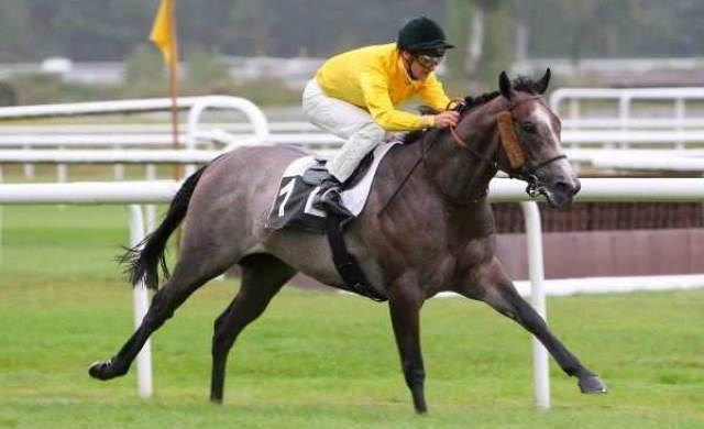 PRESTIGE VENDÔME cheval