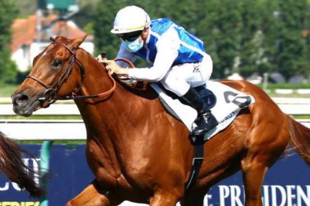SALESMAN cheval