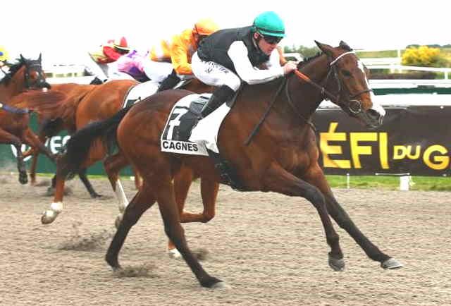 THALYIA cheval