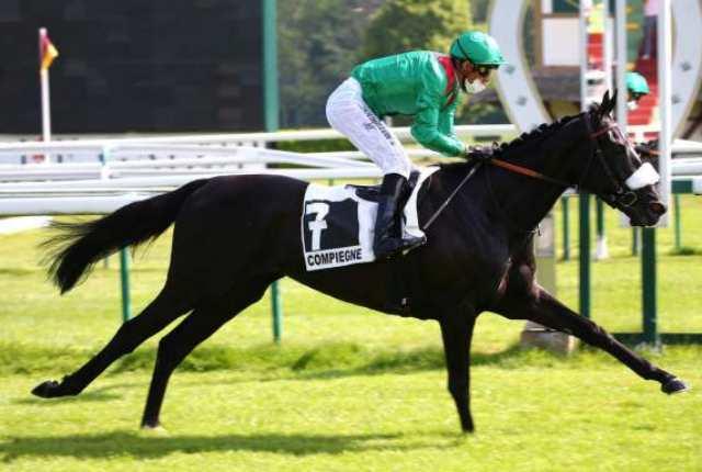 VADALIYA cheval