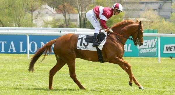 ZARIYANO cheval