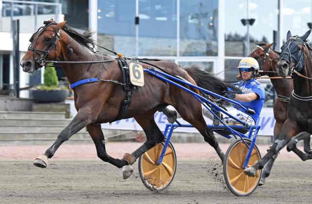 ARAMIS BAR cheval