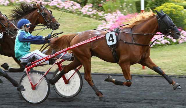 BELLAGIO MONOI cheval