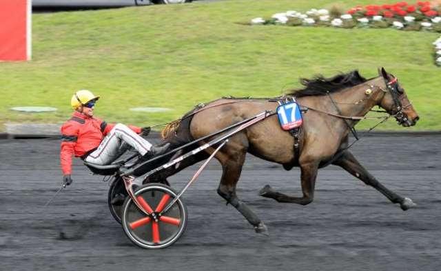 BOLD EAGLE remporte son 2ème PRIX D'AMÉRIQUE