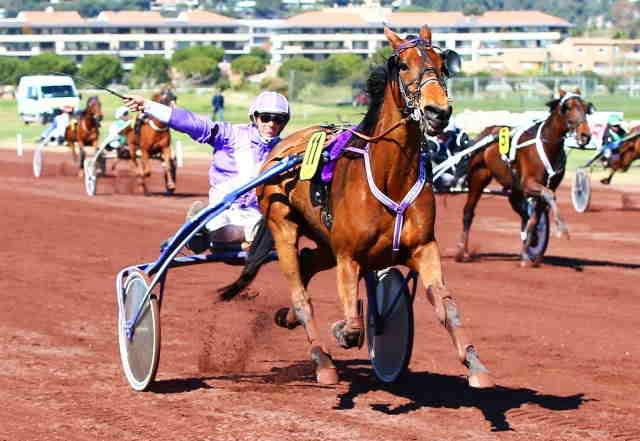 BULLE DE LAUMONT cheval