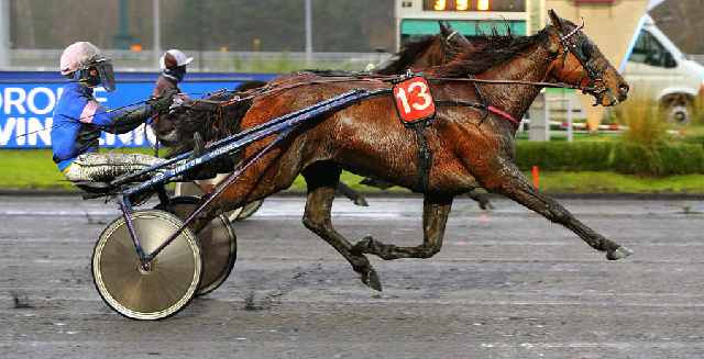 CARIOCA cheval