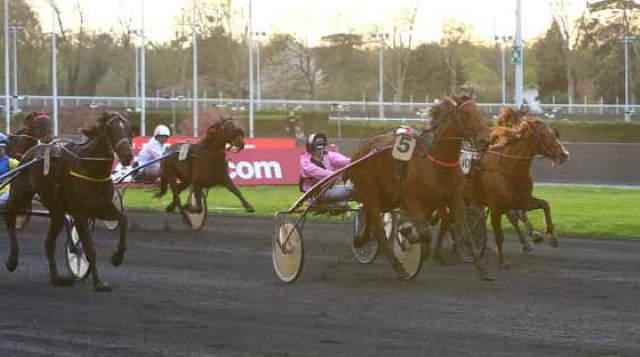 CLASSE DES OBEAUX cheval