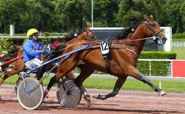 CLASSIC CONNECTION cheval - Jean-Pierre DUBOIS