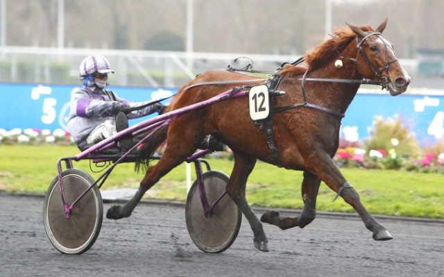 DANAE DE CORBERY cheval