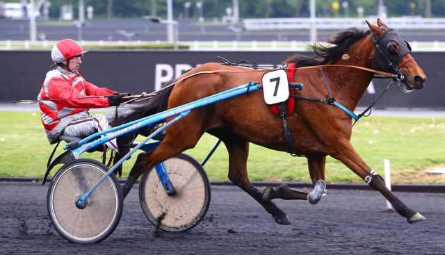 DÉESSE DE CORDAY cheval