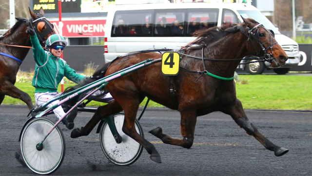 DIABLO D'HERFRAIE cheval