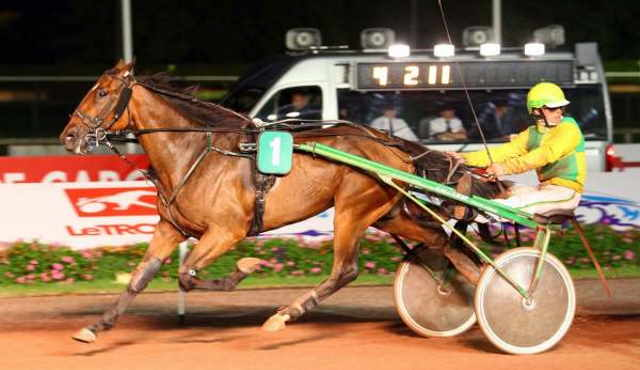 EXPRESS DE L'ITON cheval