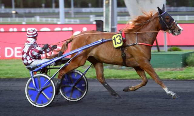 FILOE DE JARY cheval