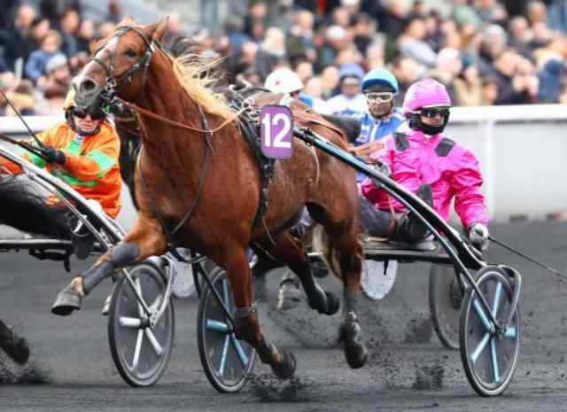 FLY SPEED cheval