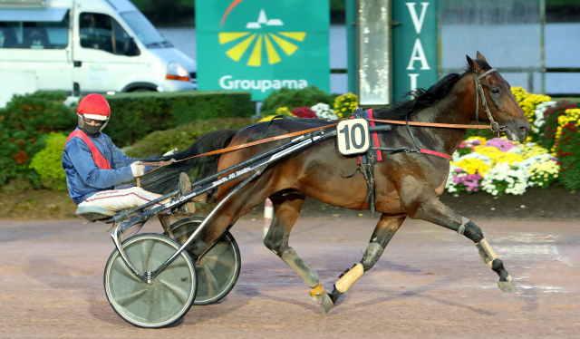GANAY DE BANVILLE cheval
