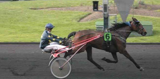 Tzarine Fac (Eric RAFFIN)- Prix de Jonzac(16/04/2011) - Vincennes - 9ème course