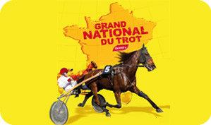 Grand National du Trot 2011